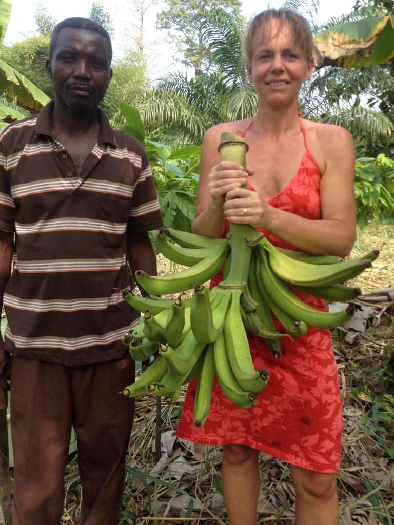 Bananskörd