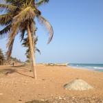 Stranden med voudoualtare nedanför Villa Suédoise